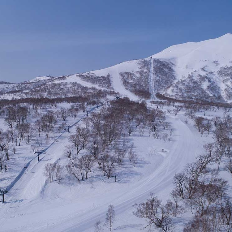 Hanazono Ski Runs