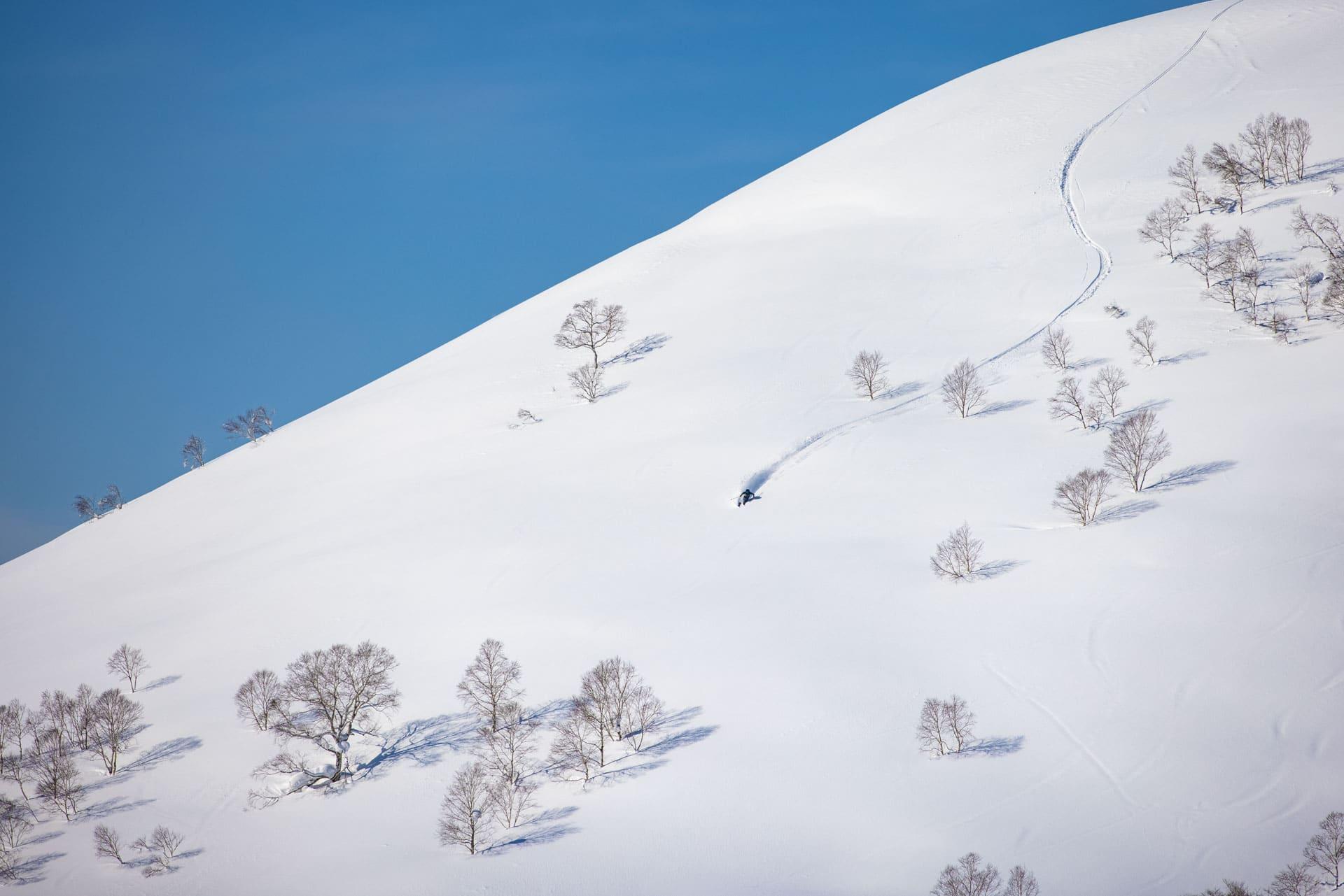 Niseko Spring 2021