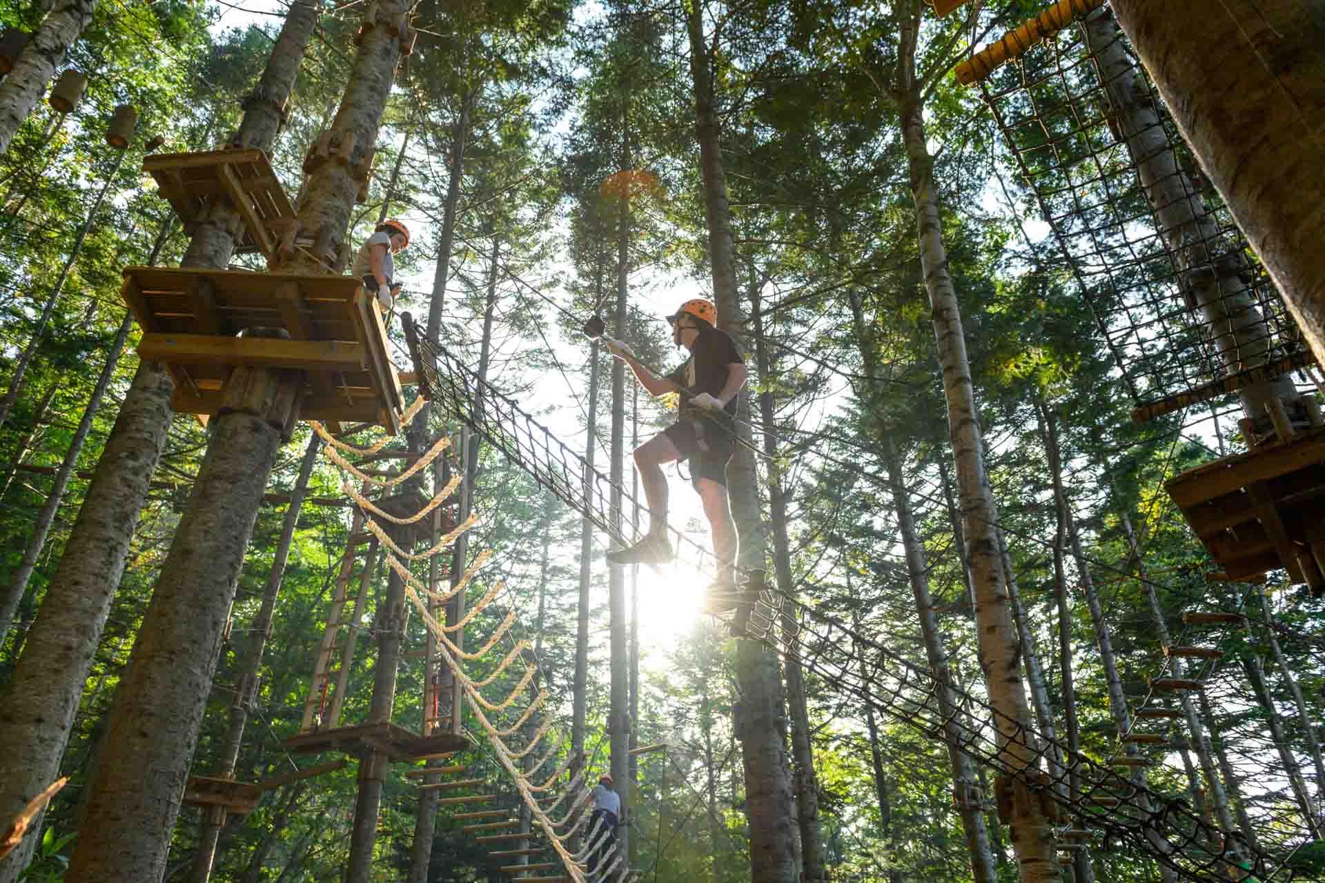 Hanazono Tree Trekking